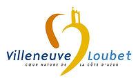 logo VL centre RVB.jpg