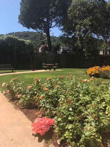 Rose Auguste Escoffier - Jardin Escoffier à Villeneuve-Loubet
