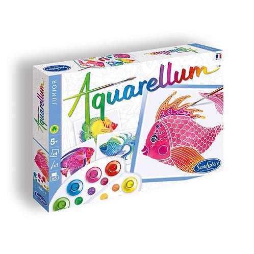 "Aquarellum Junior ""Poissons"" - Sentosphère"