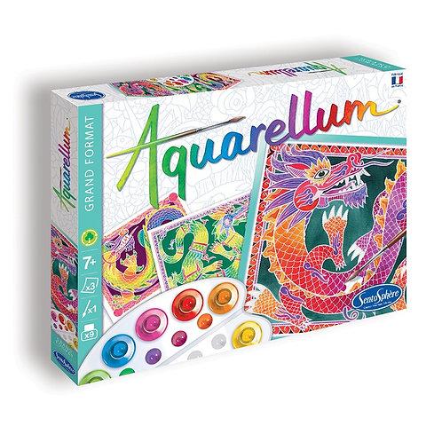 """Aquarellum """"Les dragons"""" - Sentosphère"""