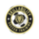 Skikllability logo.png