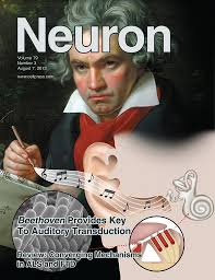 Neuron Cover 2013