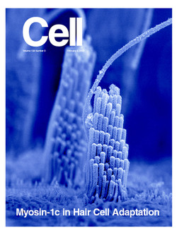 Cell Cover 2002