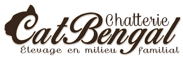 Logo Chatterie Catbengal