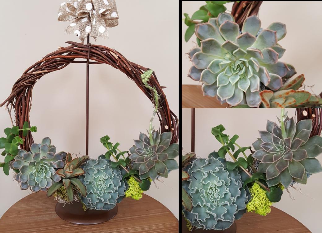 Succulent Wreath - 3/22/19