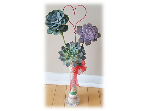 Succulent Rosette Bouquet in Vase (small)