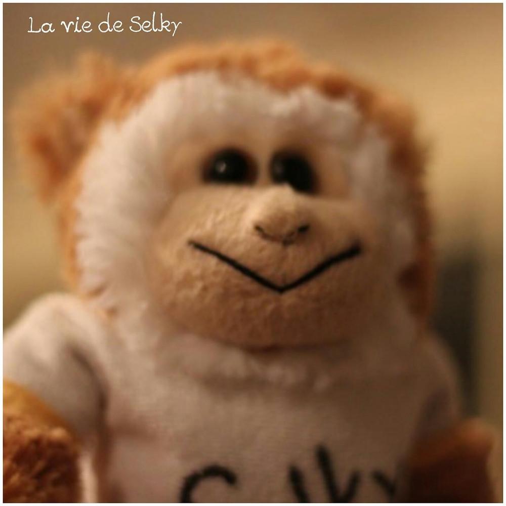 La vie de Selky, le blog