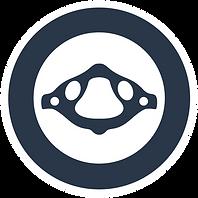 OAC_logo_watermark_navy.png