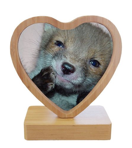 Red Fox Revolving Magnetic Heart Frame Two Fox Photographs