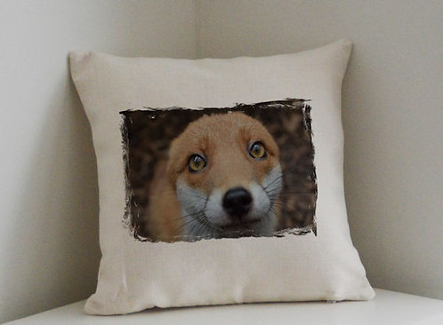 Cushion and Printed Cover of Pudding The Fox