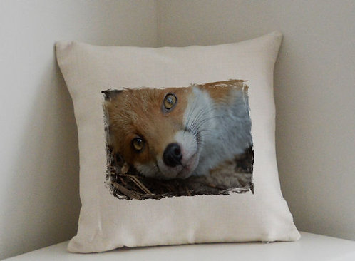 Cushion and Printed Cover of Pudding The Fox 1