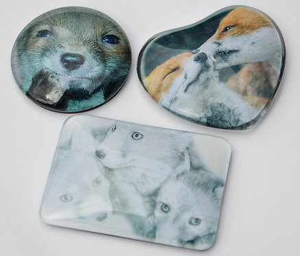 Red Fox Glass Dome Fridge Magnets Three Designs to Choose from