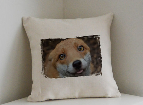 Cushion and Printed Cover of Pudding The Fox 2