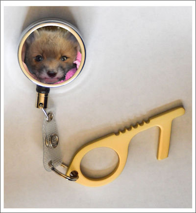 Red Fox No Contact Metal Tool Key with Retractable Reel