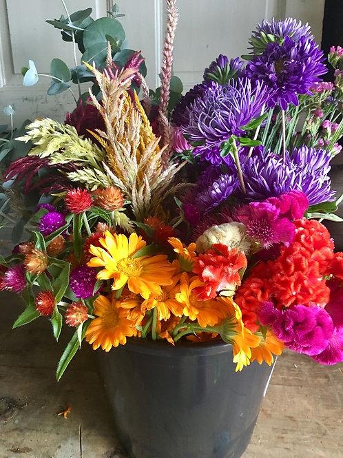10 Designer Buckets of Blooms Subscription