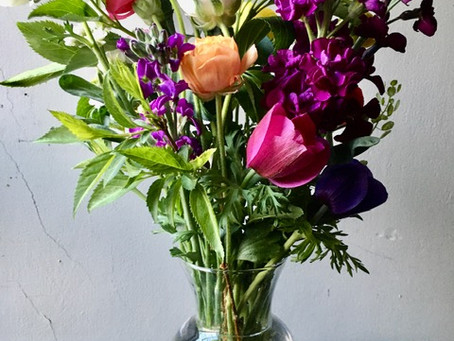 Caring for your Cut Flowers
