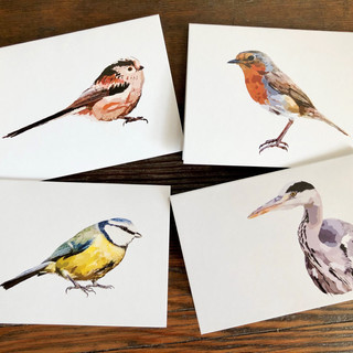 Illustrated cards - UK birds