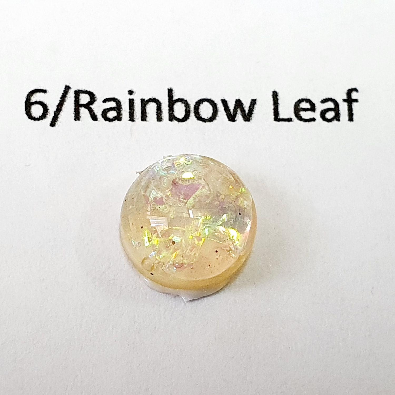 Rainbow Iridescent leaf