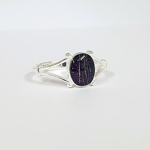 The Autumn Inclusion Ring