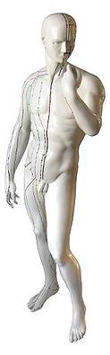 acupuncture_figure.jpg