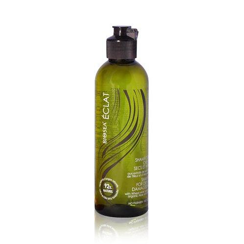 BIOSEA Шампунь для сухих и повреждённых волос Eclat