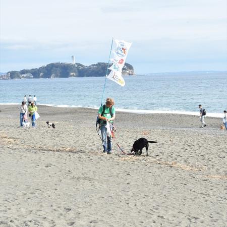 beachside4