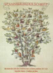 stammbaum der schrift.jpg