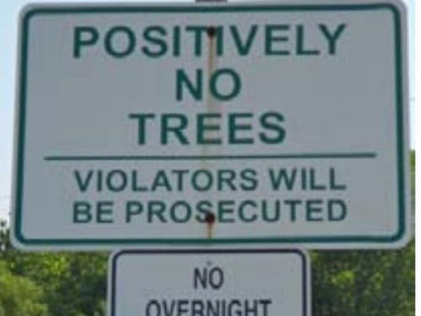 TREES, PLEASE: A Shady Business: Citizens Need to Speak Up