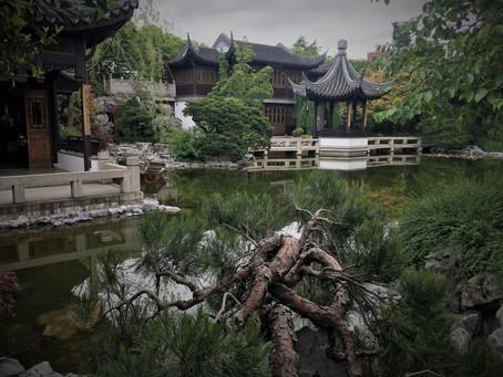 MY LIFE WITH PLANTS: Lan Su Garden in Portland Oregon