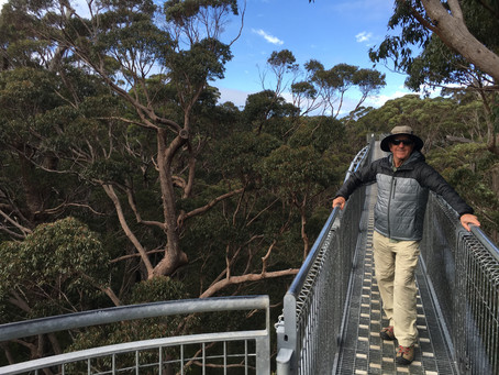 MY LIFE WITH PLANTS: Strine Outback Bush Walk – Part 4