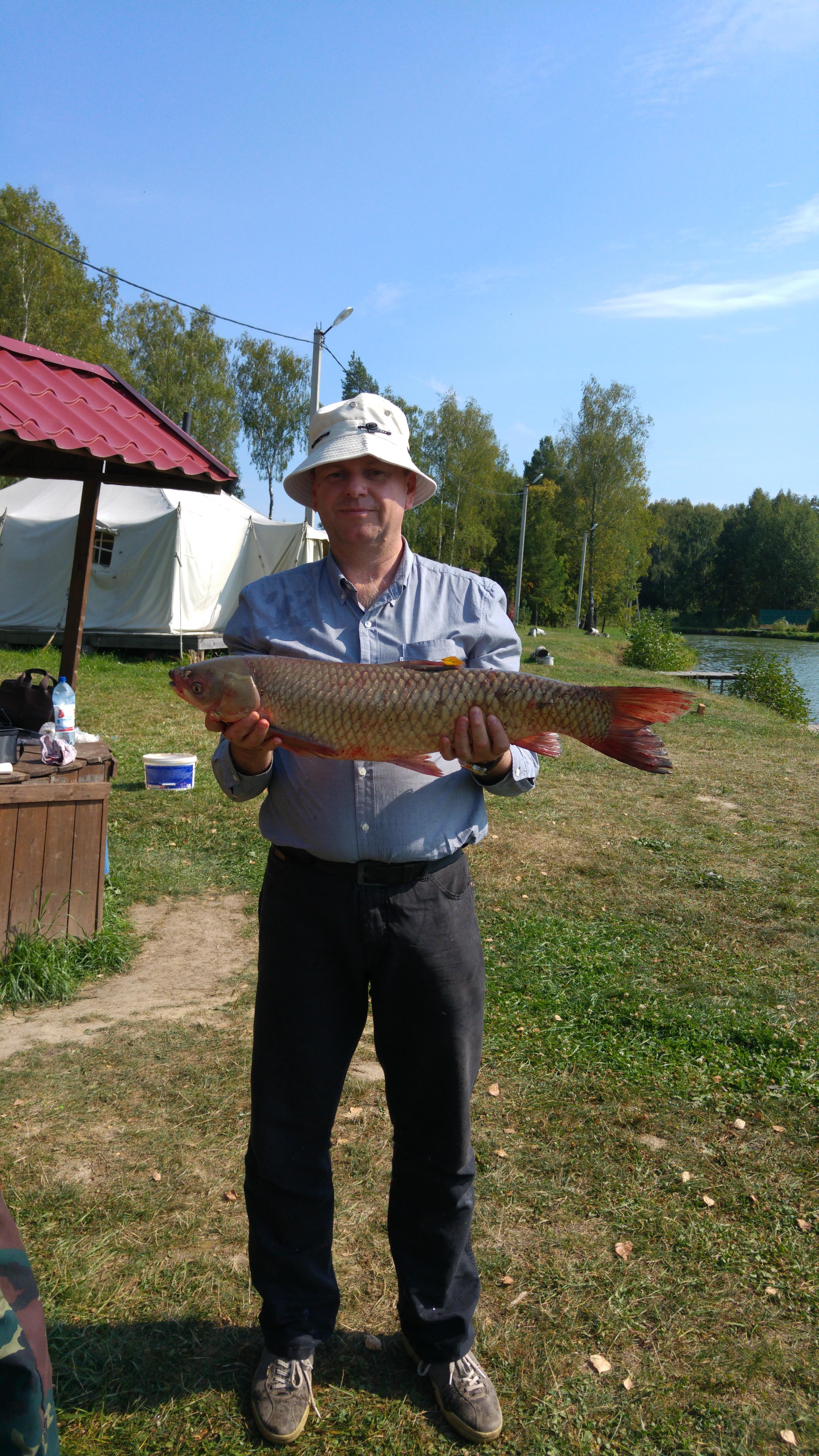 район г. Чехова  БЕЛЫЙ АМУР - 5,3 кг