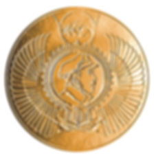 Золотая медаль Небокультуры.jpg