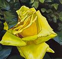 Aleksandra_Vertinskaya_Classic_Roses_1.p