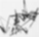 Ksuta_Cy3.png