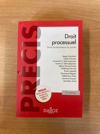 Droit processuel — Droits fondamentaux du procès (Dalloz) — 19 €