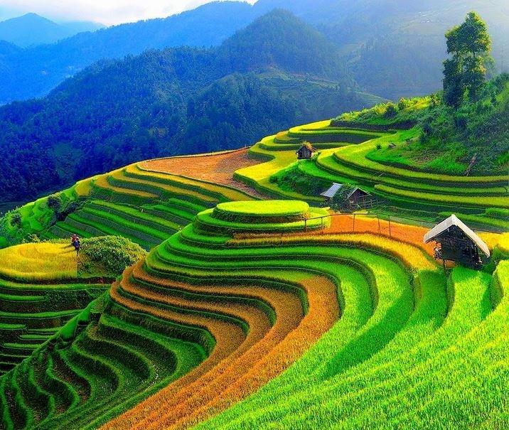 ITS Vietnam 71
