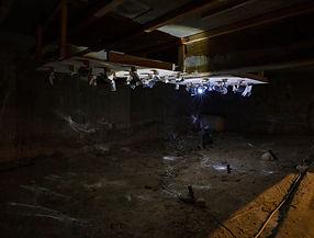 9. 박예나, 바닥의 밑면에서_사는 모양들, 2018, 반사지로 만든 비