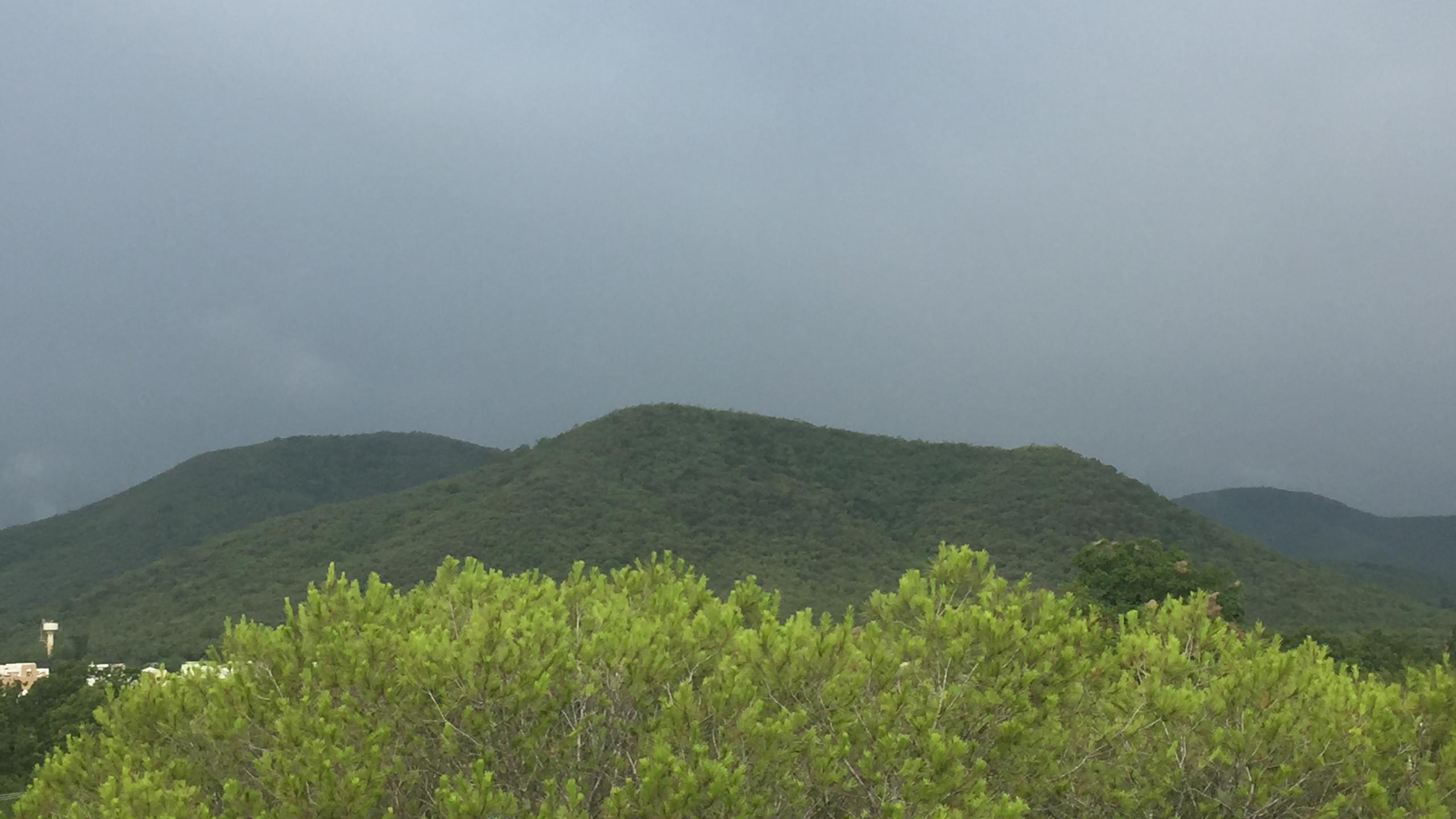 mountain -foggy day