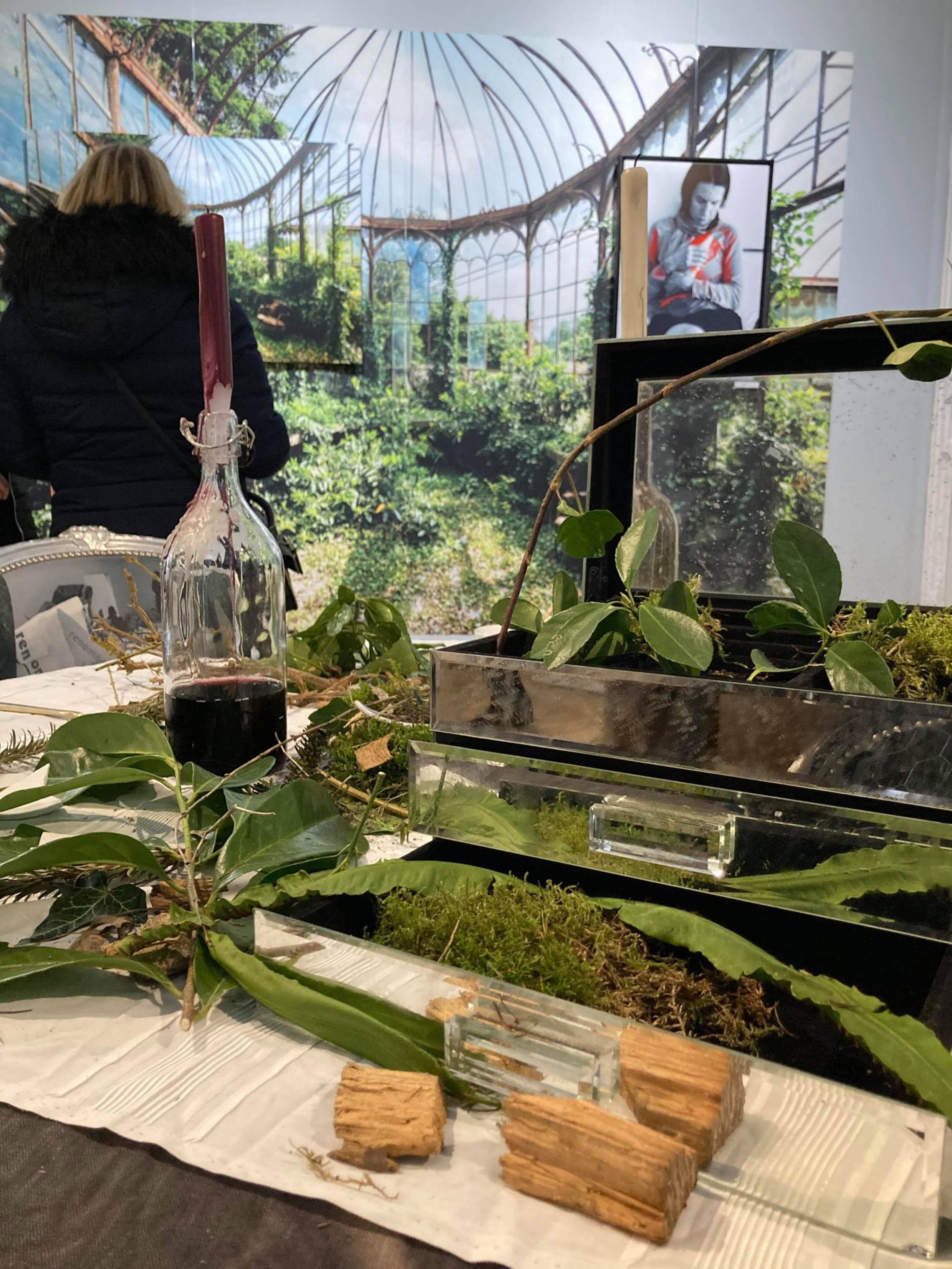 Immersion Végétale à l'Appart Renoma