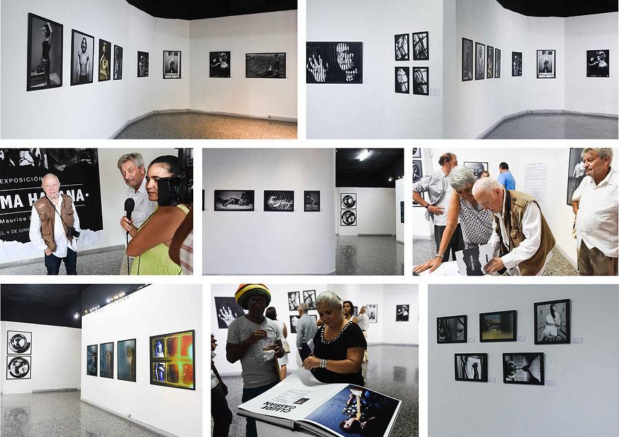 Renoma Habana • Galeria Habana