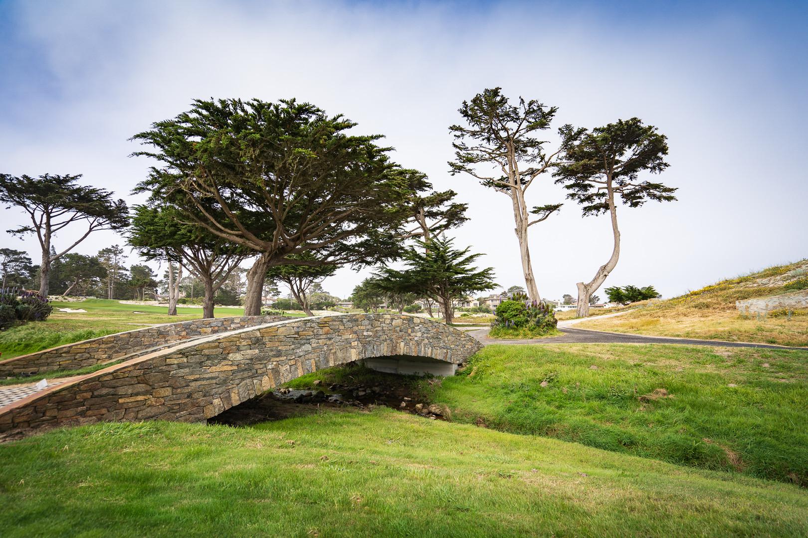 MPCC Stone Bridges