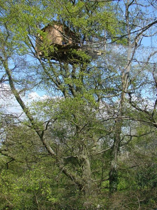 Cabane-dans-les-arbres-Grand-Duc-printem