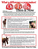 DC Foals Then and Now FRONT Thumbnail 12