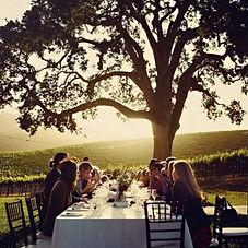 dinner-vineyard.jpg