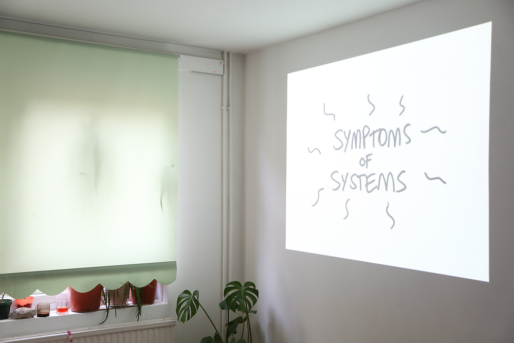 a white room , showing the corner, on the right side in projection of black text on white back gorund reading Symptons of Systems. the left iis plant on the floor a rolled down green blind with a scalloped edges and various plant pots on the windowsill.