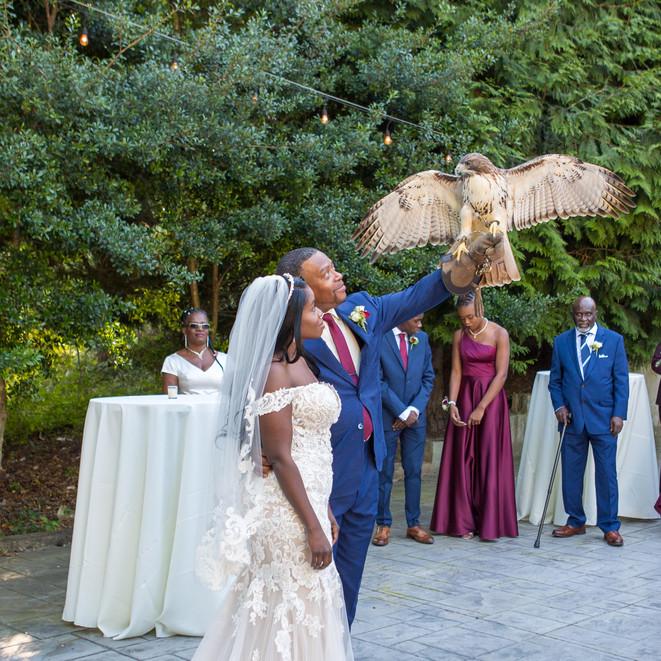 Show stopping Wedding Washington DC