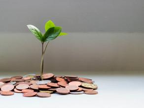 The Idea of Passive Investment