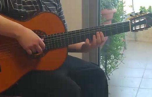 פרח הלילך גיטרה - דימה קוגן