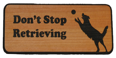 Don't Stop Retrieving - Ball