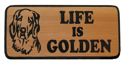 Life Is Golden - Rectangle